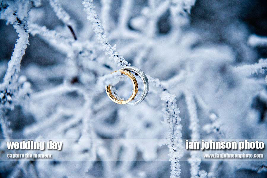 bröllopsring-ringar